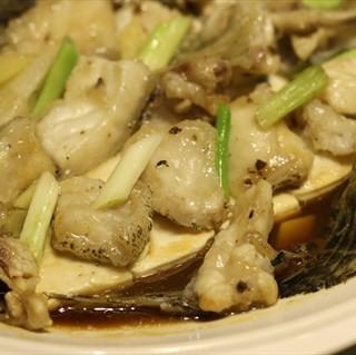 清蒸龙趸斑翅 - huochezhan's 唐苑酒家 (huochezhan)|Guangzhou
