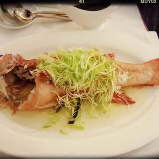 清蒸東星斑 - 位於薄扶林的百樂金宴 (薄扶林) | 香港